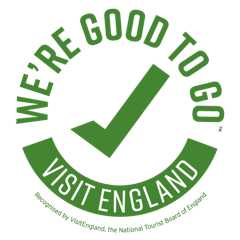Good to Go logo png file 260 by 260