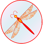 Red dragonfly productions